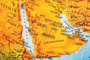 Arabia Saudí: más reacción por riesgo que por suministro